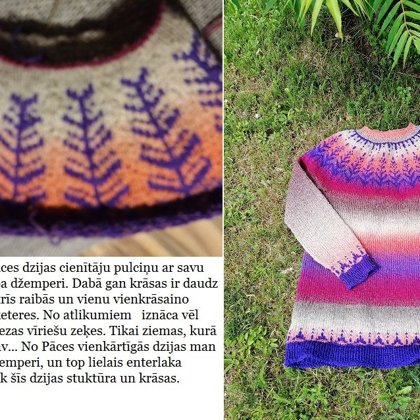 10. Ilvas džemperis